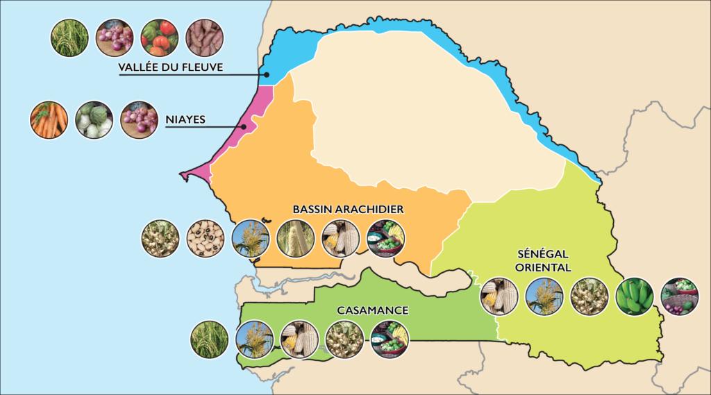 DS AEZ. MAP OF SENEGAL