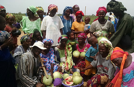 Photo of African Farmers with Melons