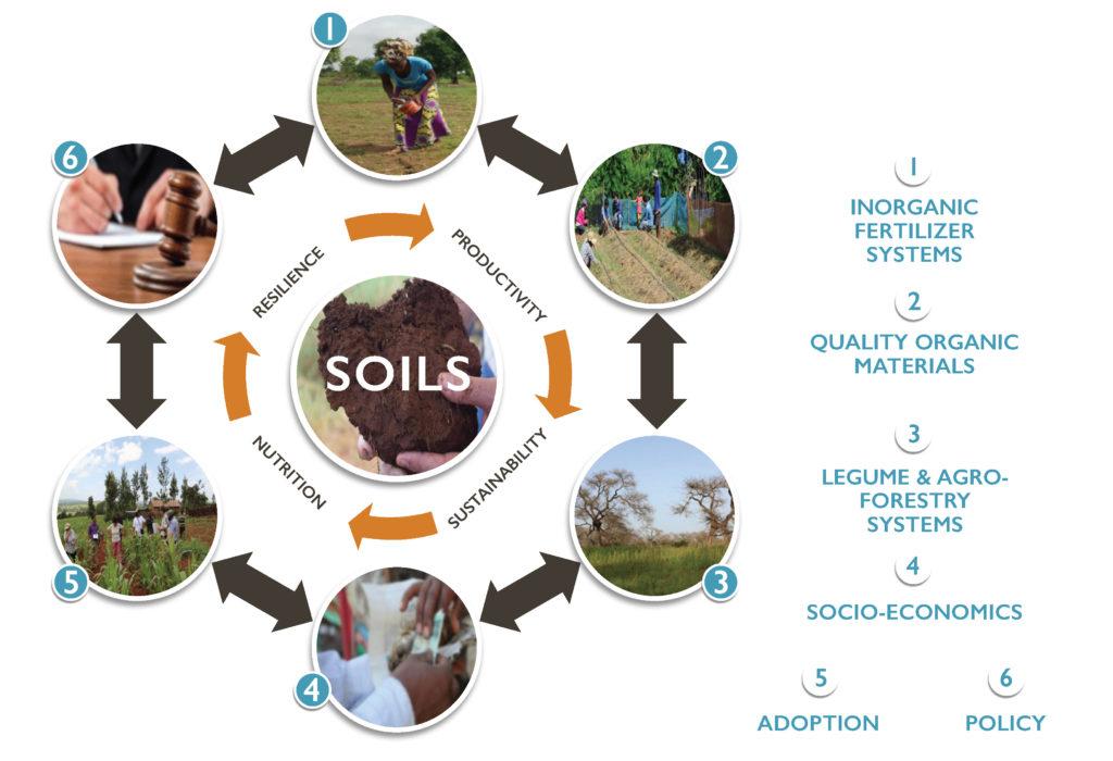 Graphics depicting SOILS consortium