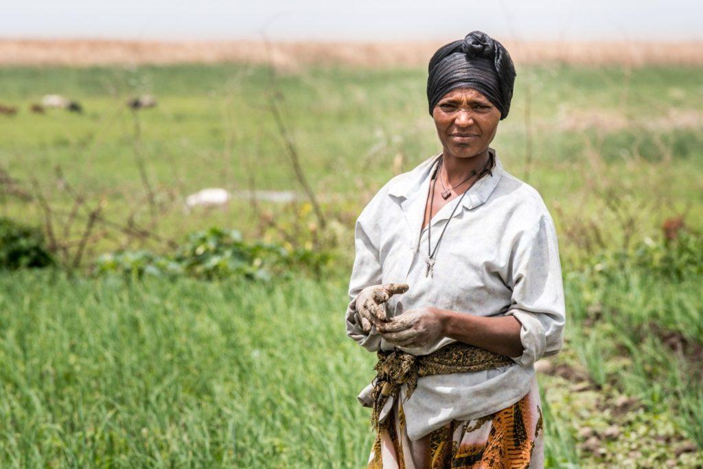 Meki Batu Ethiopia - Fruit and Vegetable Growers Cooperative