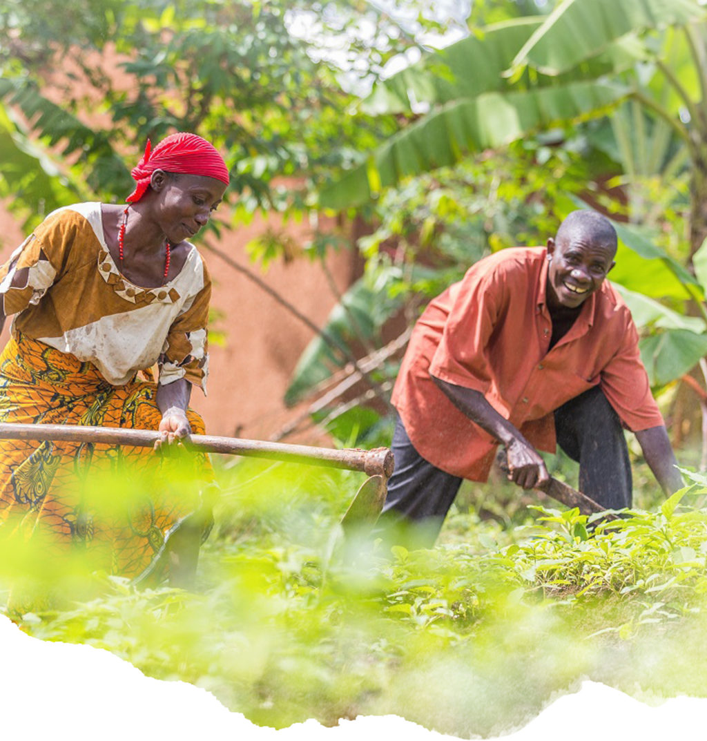 A husband and wife farm their land