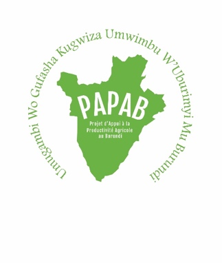 Logo for PAPAB Project