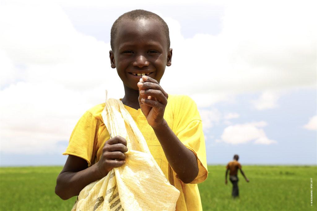 Boy with briquettes