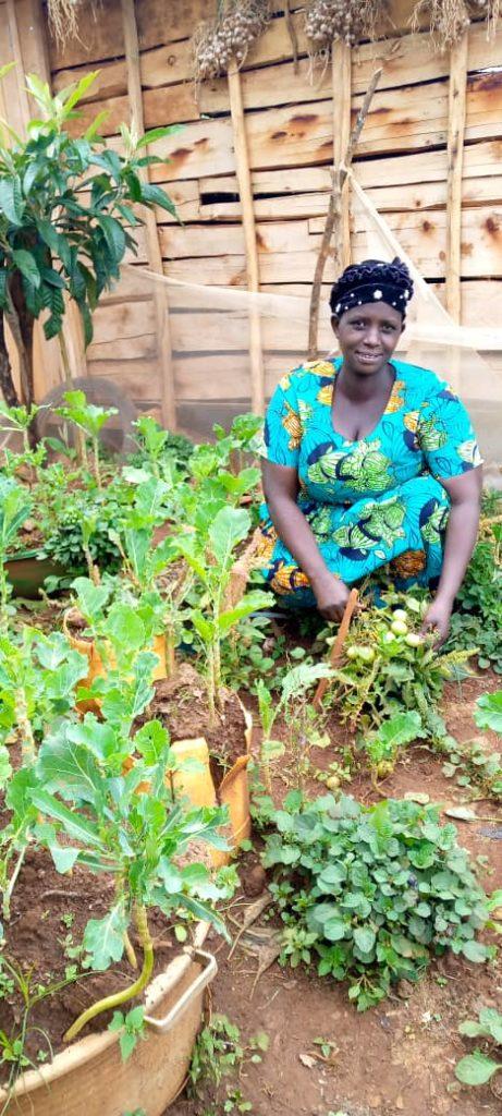 Suena's kitchen garden