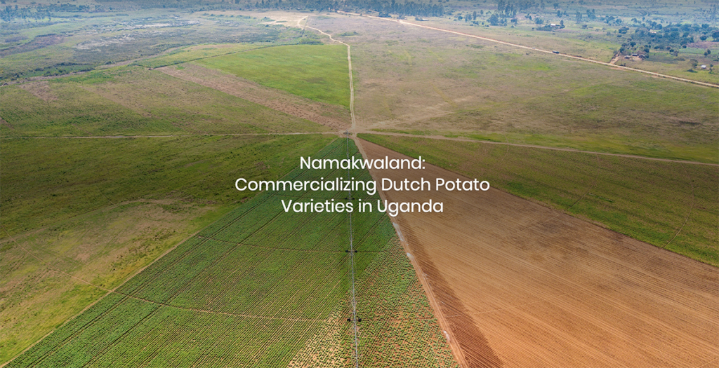 Aerial view of an irrigated farm