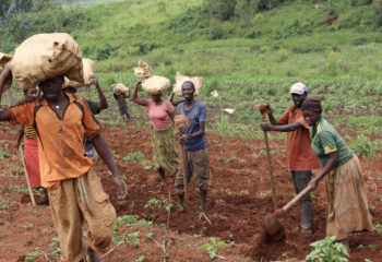 Joselyne with her family in her field harvesting potatoes