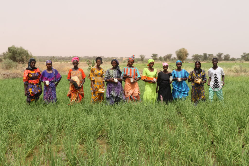 Woman holding UDP in Senegal
