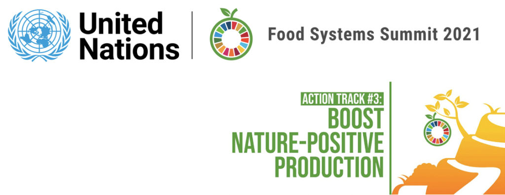 UNFSS Action Track 3 Boos nature-positive production